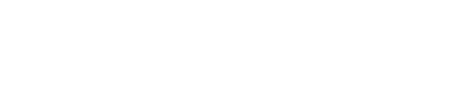 VC_logo_White_DENMARK (1)